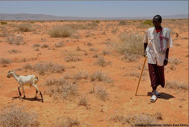 La sécheresse en Afrique de l'Est en 2009